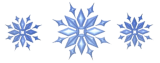 snowflake footer